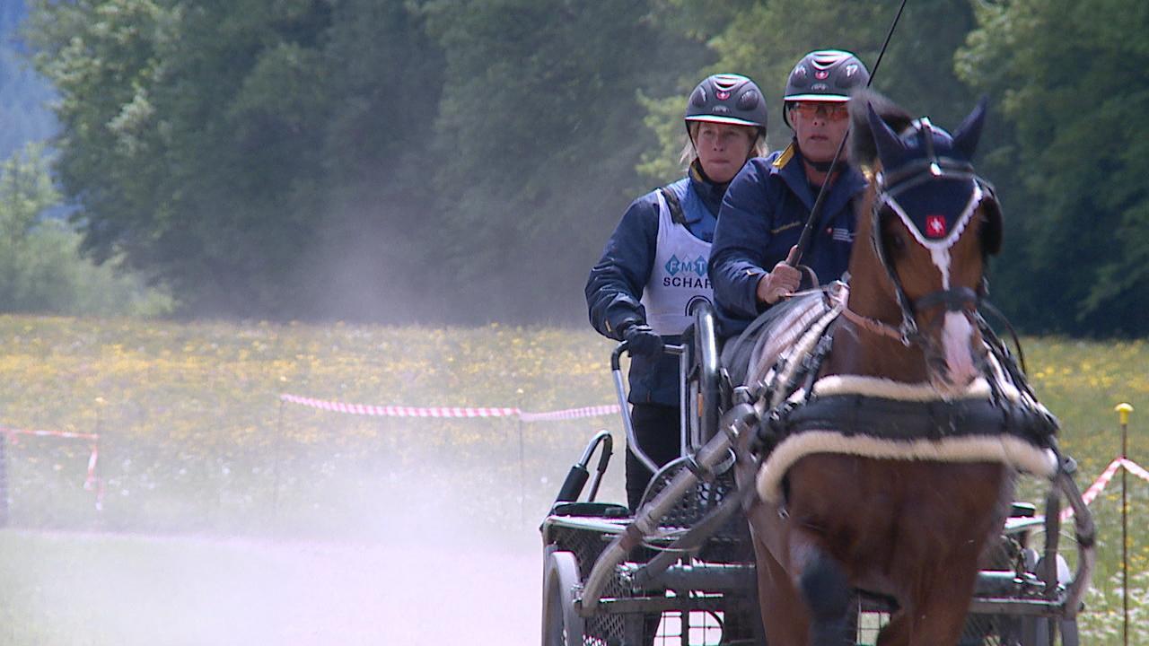 Zweites internationales Fahrturnier in Viechtwang